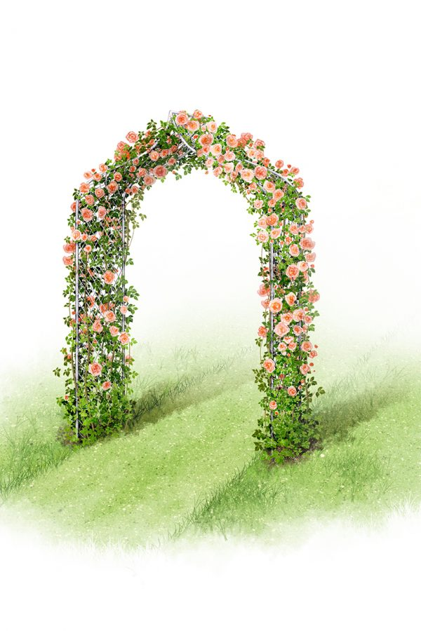 Make an instant transformation with a garden arch